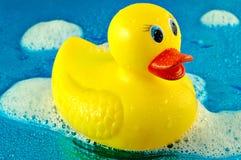 Pato de borracha nas bolhas fotos de stock royalty free