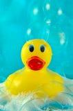 Pato de borracha nas bolhas imagens de stock