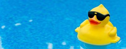 Pato de borracha no azul Imagem de Stock Royalty Free