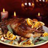 Pato de carne asada con la naranja Imagen de archivo libre de regalías