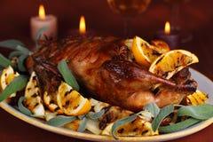 Pato de carne asada con la naranja Fotografía de archivo libre de regalías