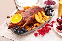Pato de carne asada con la naranja Foto de archivo libre de regalías