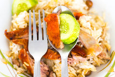 Pato de carne asada sobre el arroz imagenes de archivo