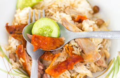 Pato de carne asada sobre el arroz foto de archivo libre de regalías