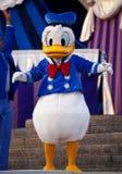 Pato de Donald Imagens de Stock