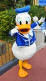 Pato de Donald no mundo de Disney Fotografia de Stock Royalty Free