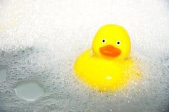 Pato de goma Imagen de archivo libre de regalías