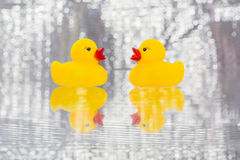 Pato de goma amarillo Imágenes de archivo libres de regalías