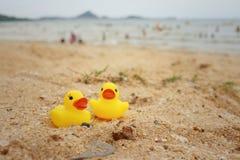 Pato de goma amarillo en el fondo de la arena Foto de archivo