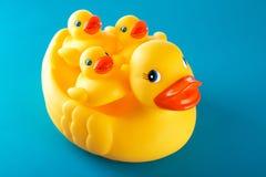 Pato de goma amarillo y poco ducky aislada en azul Imagen de archivo libre de regalías