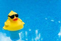 Pato de goma en azul fotografía de archivo