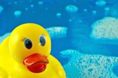 Pato de goma en burbujas imagenes de archivo