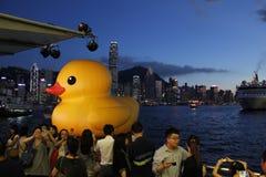 Pato de goma EN HK Fotos de archivo