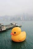 Pato de goma en Hong-Kong Foto de archivo
