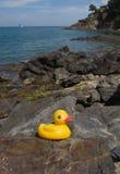 Pato de goma en orilla mediterránea Fotos de archivo