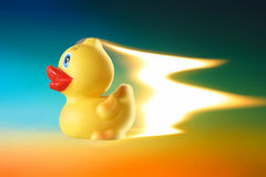 Pato de la potencia fotografía de archivo libre de regalías