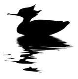 Pato de peixes do desenho do vetor Foto de Stock