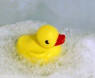Pato del juguete en espuma Imágenes de archivo libres de regalías
