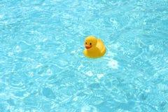 Pato del juguete en la piscina Foto de archivo