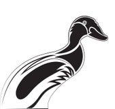 Pato del pato silvestre stock de ilustración