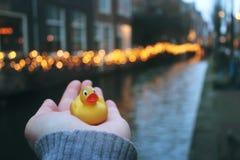 Pato del viaje en la cerámica de Delft, Holanda Fotos de archivo libres de regalías