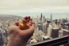 Pato del viaje en Skydeck, Willis Tower, Chicago Imagenes de archivo