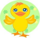 Pato doce do bebê Imagem de Stock