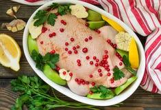 Pato enchido com as maçãs e a couve prontas para cozinhar com arandos, limão e especiarias Imagens de Stock