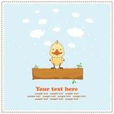 Pato engraçado, cartão, vetor Fotos de Stock Royalty Free