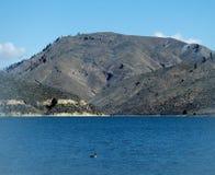 ¡Pato! Ganso Montaña Imagen de archivo libre de regalías