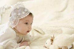 Pato llooking do bebê imagem de stock royalty free