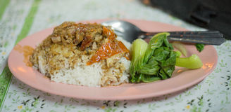 Pato roasted arroz Imagens de Stock