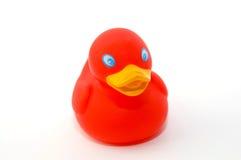 Pato rojo del baño de la tarjeta del día de San Valentín Foto de archivo libre de regalías