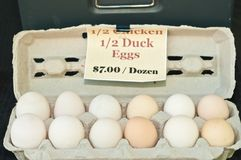 Pato y huevos de gallina orgánicos, locales para la venta foto de archivo libre de regalías