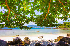 Patong paradise beach phuket ,Thailand Royalty Free Stock Photos