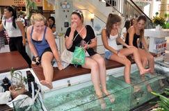 Patong, Thaïlande : Femmes obtenant le massage de poissons image stock