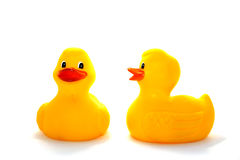 Patos Fotos de Stock
