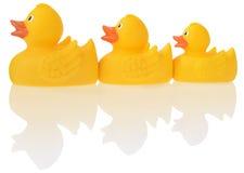 Patos amarillos Imagenes de archivo