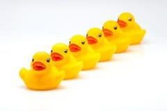 Patos amarillos de la goma Fotografía de archivo