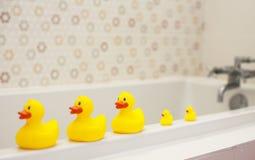 Patos de borracha amarelos Imagens de Stock Royalty Free