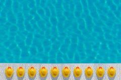 Patos de borracha amarelos próximos à associação Conceito mínimo do verão imagem de stock royalty free