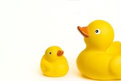 Patos de goma Foto de archivo libre de regalías