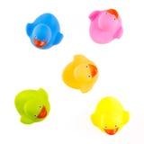 Patos de goma aislados Foto de archivo libre de regalías
