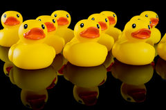 Patos de goma amarillos en filas Foto de archivo