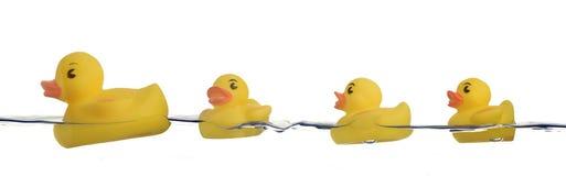 Patos de goma en agua Imagen de archivo