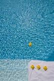 Patos de goma en la piscina Fotos de archivo libres de regalías