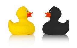 Patos de goma negros y amarillos Imagen de archivo libre de regalías