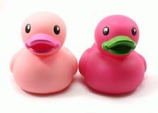 Patos de goma rosados Imágenes de archivo libres de regalías