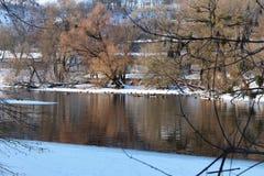 Patos de la invernada Fotos de archivo libres de regalías