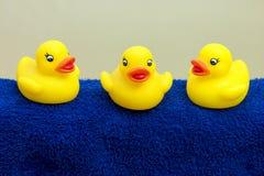 Patos del baño Fotografía de archivo